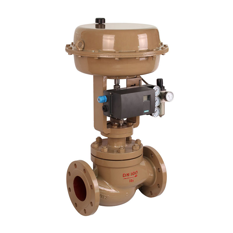 single seated control valve