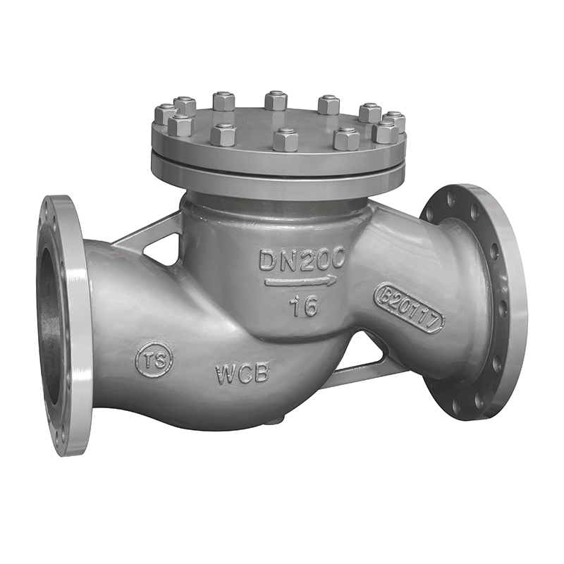 Industrial Check Valve Piston Check Valve