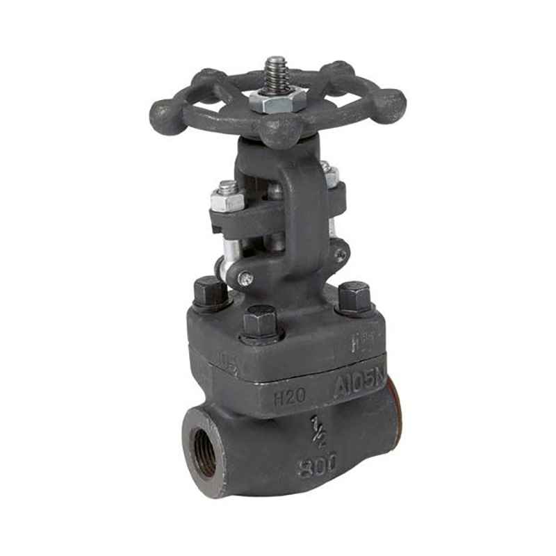 Gate Control Valve American Petroleum Institute 602 Series Gate Valve