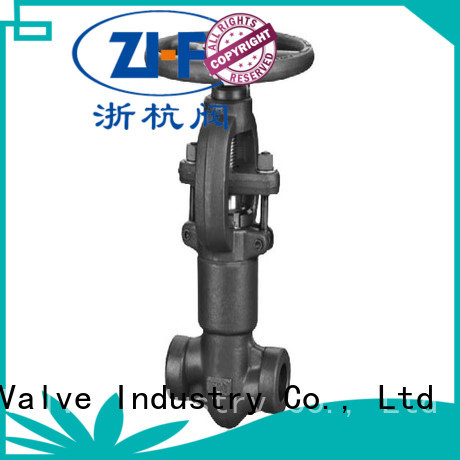 Nanfang industrial globe valve tool LNG