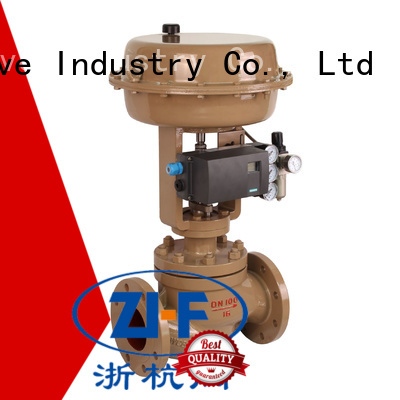 industrial cage type control valvepapermaking
